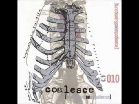 Coalesce-A Disgust for Details