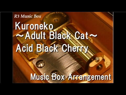 Acid Black Cherry - Kuroneko Adult Black Cat