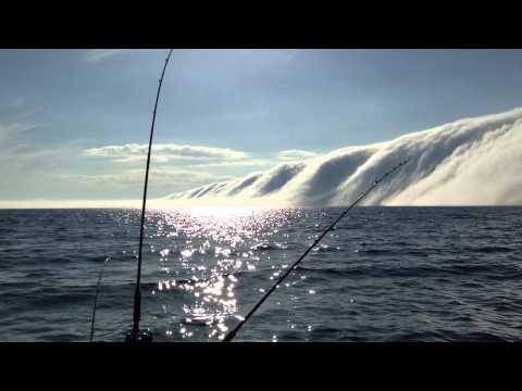 Huge Fog Bank Rolling in over Lake Michigan