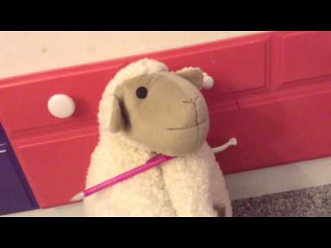 Interview with Mary the sheep