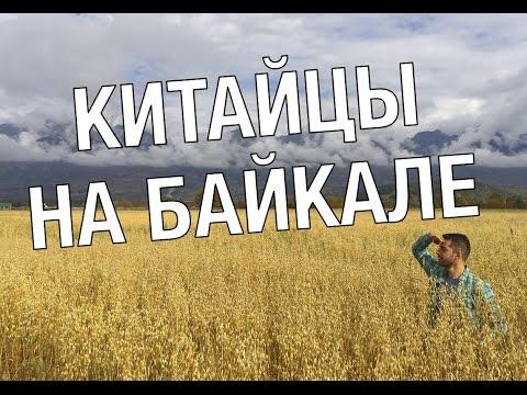 Китайцы захватили Байкал! Что китайцы думают о России?