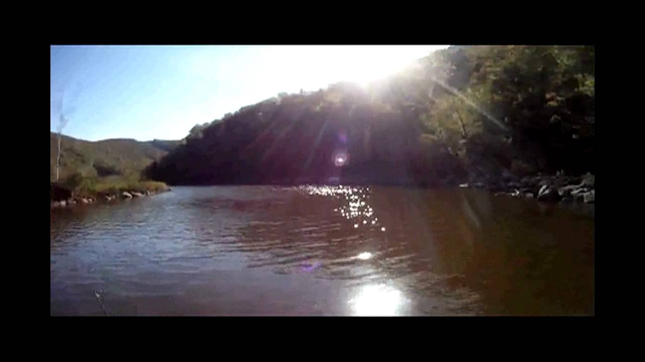Deerfield river monster brown trout youtube for Deerfield river fly fishing