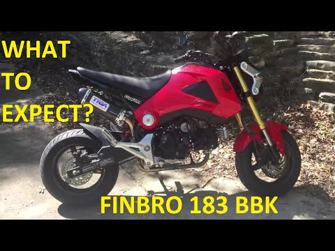 Honda Grom Performance Mods #5 - Finbro 183cc BIG BORE KIT + Kitaco Clutch Cover & Oil Cooler!