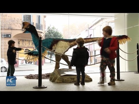Chinese paleontologist ignites dino craze in Buenos Aires