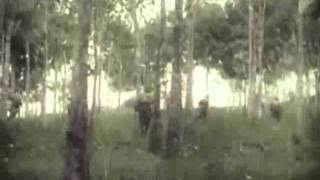 Pt 2 1942 The Taking Of Malaya And Singapore Japanese Footage