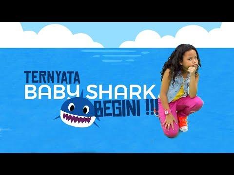 download lagu Ternyata BABY SHARK Begini gratis