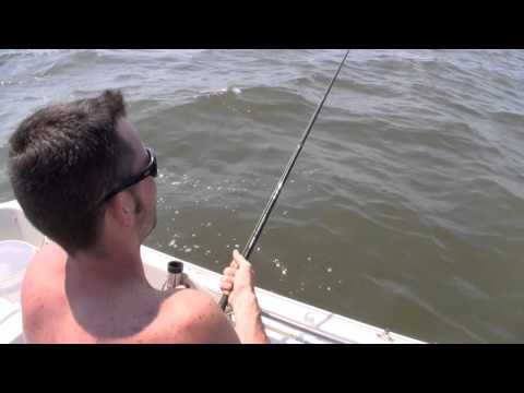 SHARK FISHING - I catch a 9 foot Sand Tiger in the Delaware Bay