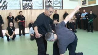 Bujinkan Ninja Master Noguchi Sensei Ninjutsu Breakdown: Weight Shifts and Spine Twists