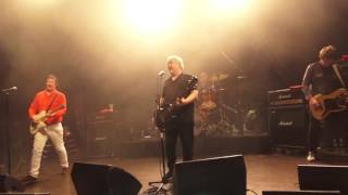 Watch Buzzcocks Noise Annoys video