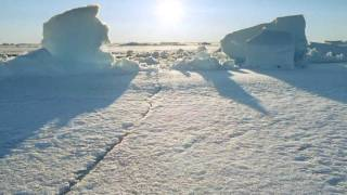 BBC - Frozen Planet - Trailer (HD)