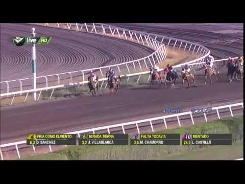 Vidéo de la course PMU PREMIO JUST FINE H.