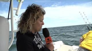 FIPSAS/Sharklife  - Taggati gli Squali a Porto Barricata