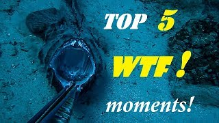 Spearfishing TOP 5 WTF moments CAUGHT on VIDEO ✔
