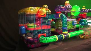 Gerbil Cage, Kaytee CritterTrail Village for Gerbils, Mice or Hamsters includes Burrowing Maze