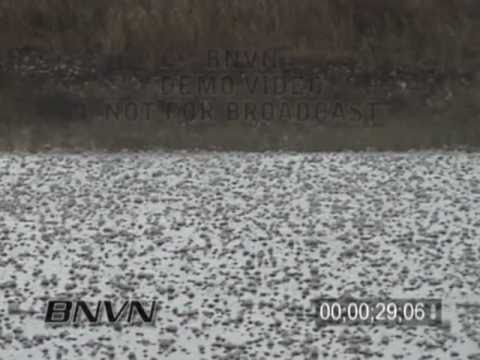5/10/2004 Carr Colorado Hail Storm Stock Video