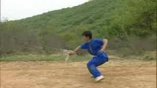 Shaolin Damo Sword Demonstration coohk