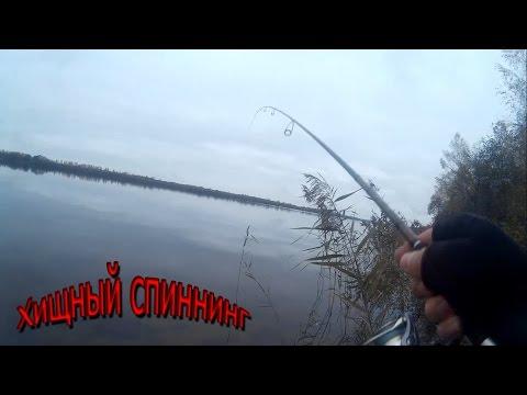 ловля на волге на вертушку видео