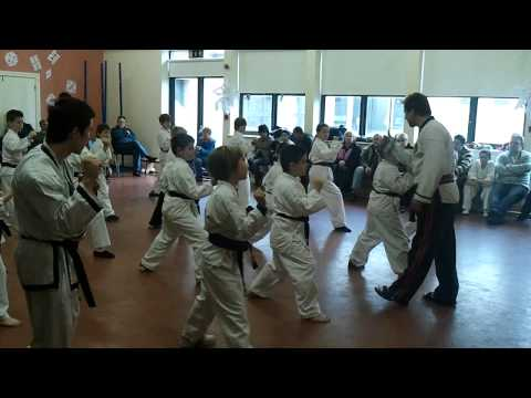 Oskar training Tang Soo Do Image 1