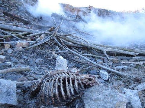 Централия - город, который сожгли и забыли / Centralia - burned and forgotten city