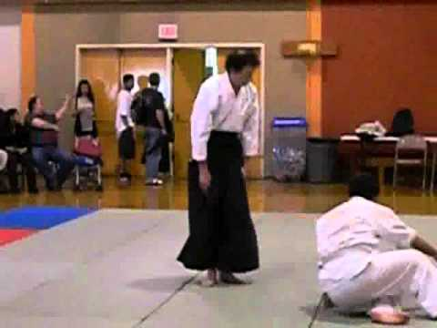 The Benefits of Aikido Training.wmv Image 1