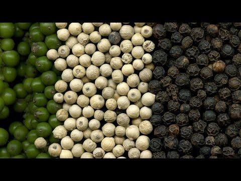 Clique e veja o vídeo Curso Produção e Processamento de Pimenta-do-Reino