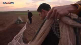 الطيور المهاجرة تتجنب شمالي العراق