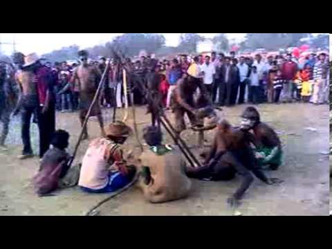 tusu mela at dahigora ghatsila