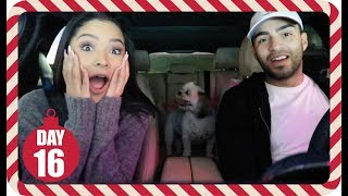 OMG HE LOST 10 POUNDS ! | Vlogmas Day 16