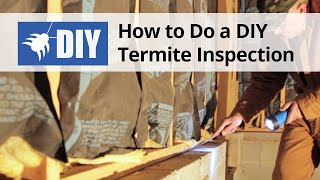 How to Do A Termite Inspection