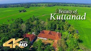 Beauty of Kuttanad - 4K Aerial view