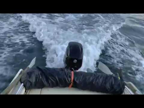 рыбалка баренцево море губа