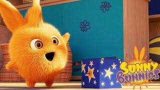 SUNNY BUNNIES | SCATOLA MAGICA | Cartoni animati divertenti per bambini | WildBrain
