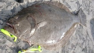 Inlet Flounder Fishing - 6-pound Fluke on the Rocks