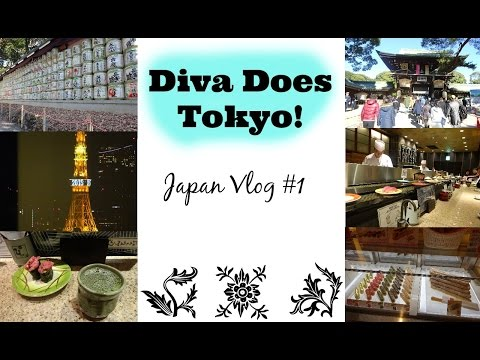 Japan Vlog- Hello From Tokyo!