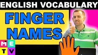 Names of Fingers in English - Twiddling Your Thumbs?