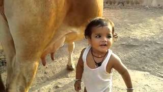 Baby drinking cow milk