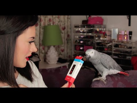SEPTEMBER FAVOURITES (featuring  Kasuku The Talking Parrot )