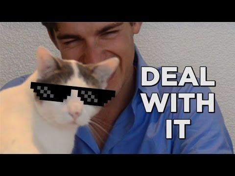 CatPat is a jerk...