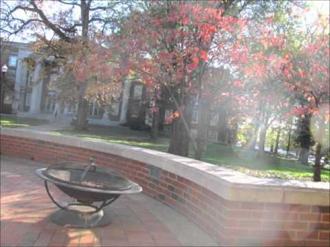 Vanderbilt University Campus Tour in Autumn: A Gorgeous Oasis