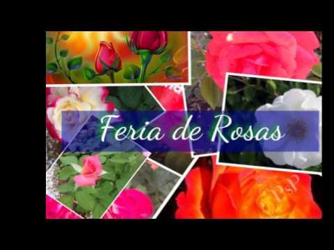Marimba Valle del Ensueño vol.2 - La Feria de las Flores