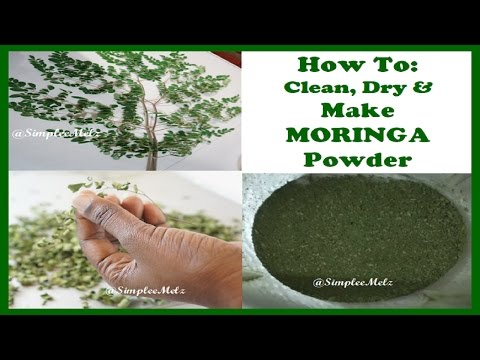 HOW TO Clean. Dry  Moringa Leaves & Make your own Moringa Powder   SimpleeMelz