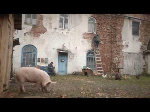 Кукуцаполь - кадры из фильма