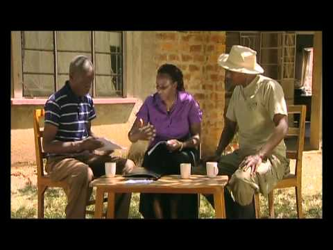 Shamba Shape Up - Applying for a Loan Thumbnail