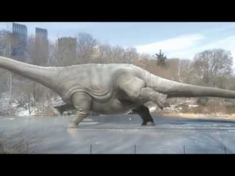 Apatosaurus lands triple axel in City Park! Video