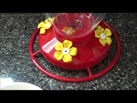 Como preparar néctar para colibríes facil y económico