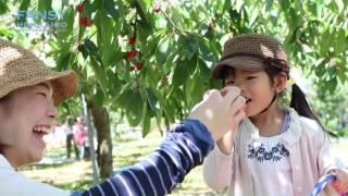 北後志観光プロモーションビデオ 【四季編】