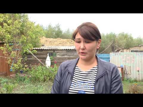 Село Сулу Кол (Чесноково) ЗКО