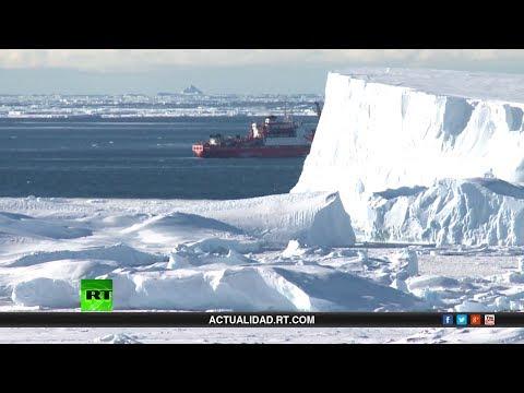 Especial: Navegando a la Antártida