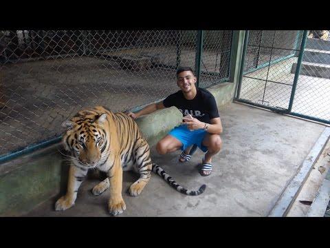 ZELFS IN THAILAND AANGEHOUDEN! VLOG 24