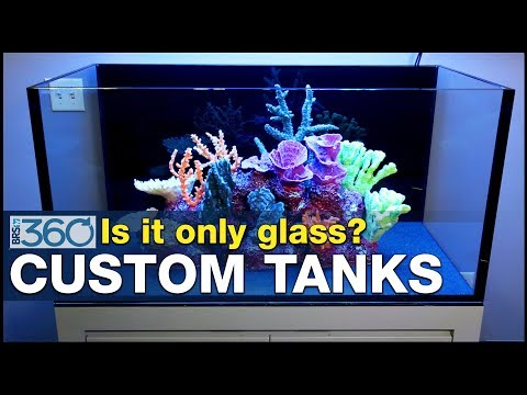 Ep.9 - Who is going to build your dream tank? Consider these aquarium manufacturers.  | BRS360